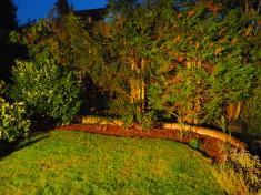 """""""Herbstsummen"""" Aktion 1 – Ausgangssituation: Vorgarten"""