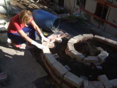 Bau der Kräuterschnecke