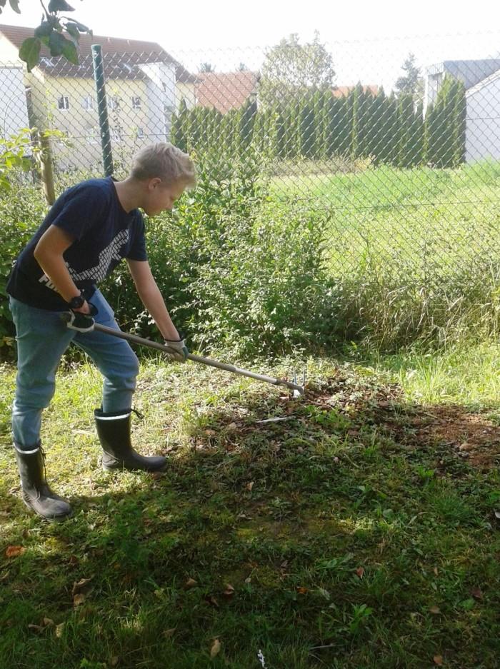 Bearbeitung der Bepflanzungsfläche im Schulgarten der Selma-Rosenfeld-Realschule in Eppingen Auf ...