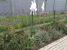Es blüht so schön! Unser Garten im August 2016.