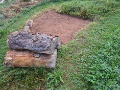 Vorherbild – Bodennistende Wildbienen brauchen offene Flächen für den Bau ihrer Brutzellen.