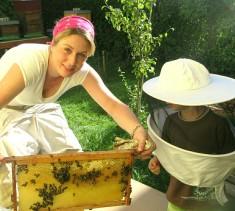 Bei den Bienen mit meinem Jüngsten 🐝