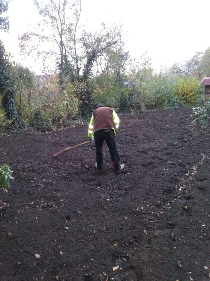 Vorbereiten der Wiese für die Bepflanzung (ca. 100 qm) in Handarbeit.