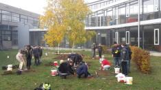 Abtragen der Grasnarbe und Aushub für die Obstbäume.