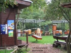 Blick auf die Beuten des Lehrbienenstandes