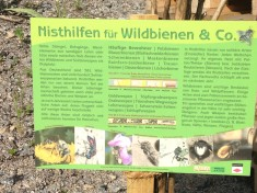 Infoschild Wildbienen