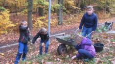 """AG """"Junge Naturforscher"""" bei der Wildblumenpflanzaktion im Herbst 2016"""