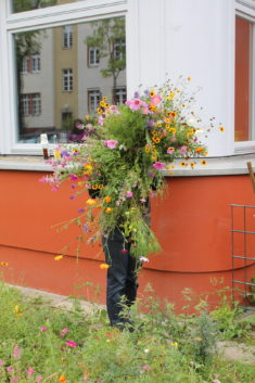 Blumenwonne