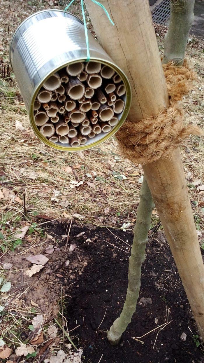 Bienenhotel basteln – Teil 3