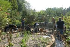 große Bauaktion: Substrattausch, Trockenmauerbau und Wegebau. Im Vordergrund: bepflanztes Kiesbeet