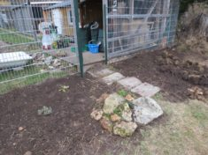 Kleiner Steingarten, der Sonnenplatz und Unterschlupf