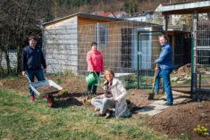 fleißige Gärtnerinnen und Gärtner am Werk