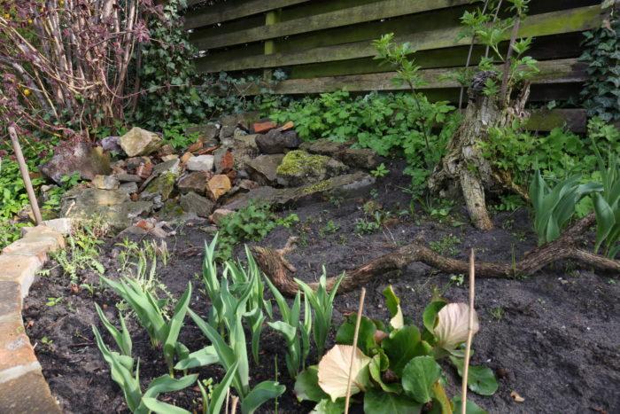 Im Hintergrund ein Lesesteinhaufen aus Fundsteinen, die sich nicht zum Verbauen eigneten. Davor  ...