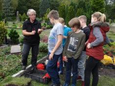 Frau Arfmann von der Gärtnerei Claussen erklärt uns wie wir die Blumenzwiebeln richtig in die Er ...