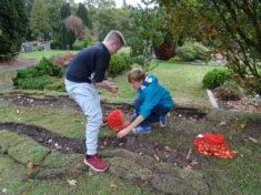 Justin und Arne pflanzen eine Blütenwelle
