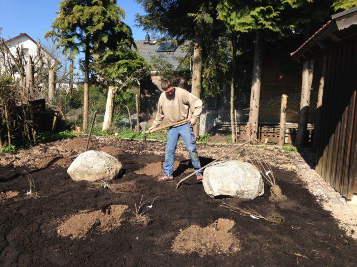Ein Hotzenwälder beim Sträucher pflanzen