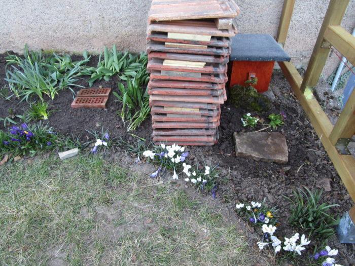 Tulpen, Narzissen und Primeln gepflanzt.