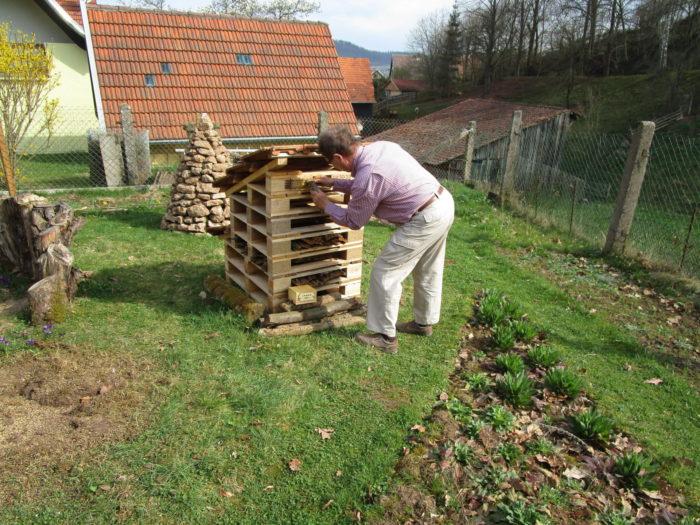 """Auch sonntags hat der """"Wir-helfen-Bienen-Freund"""" was am Insektenhotel zu tun."""