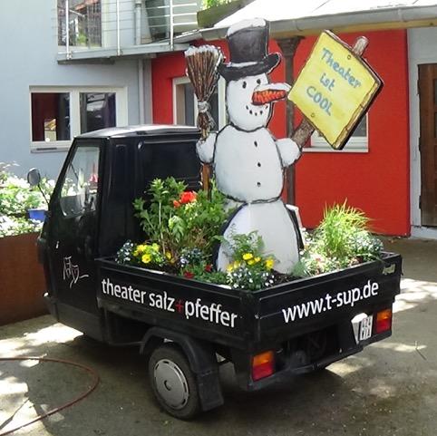 Zuhause verpflanzt – und los gehts