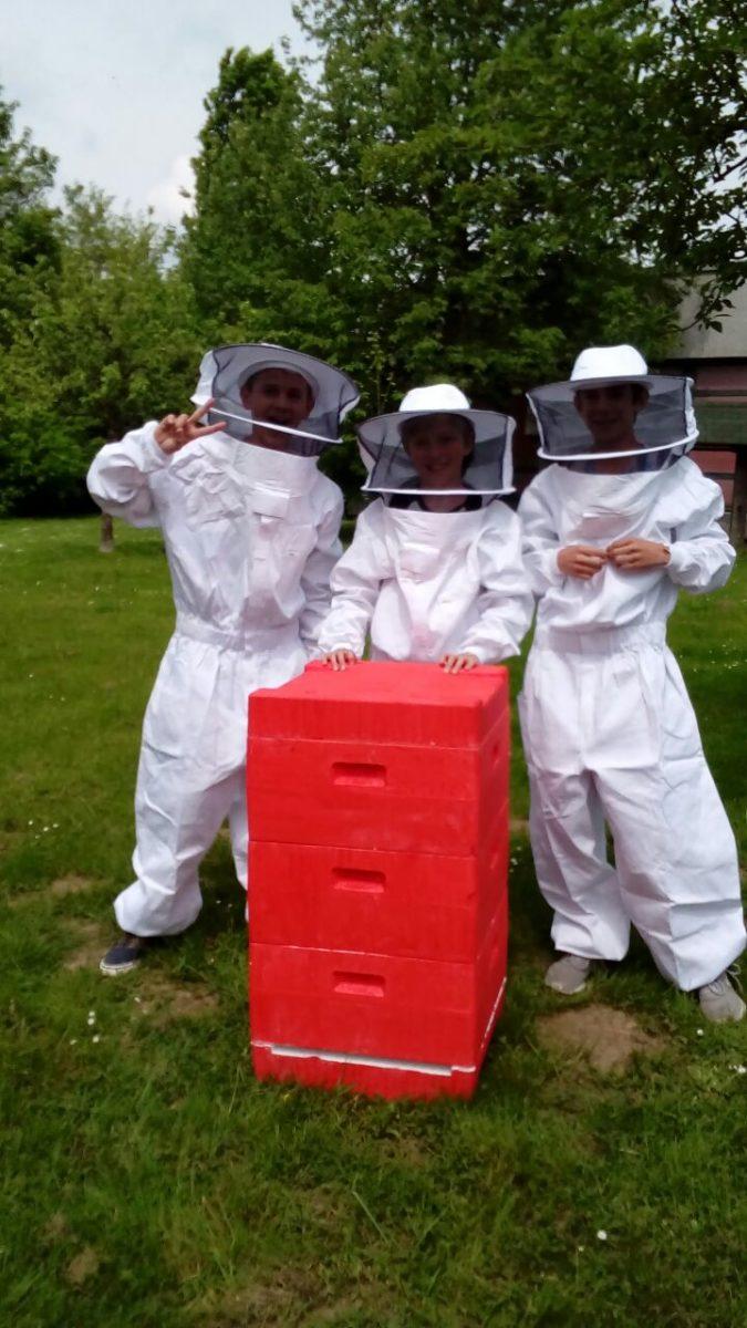 Gut gelaunte Imker und Bienen