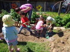 Bienenprojekt im Rahmen der Schulfruchttage. Viele fleißige Helfer packen mit an!