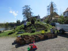 diese 20 Holzkisten wurden heute von uns am Jedermannsbeet mit Gemüse und Kräuter bepflanzt. Es  ...