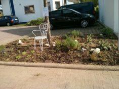 Pflanzergebnis – gießen und beobachten!