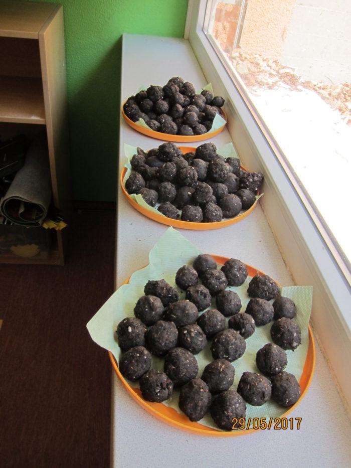 Das fertige Werk! Die Samenbomben wurden an die Kinder verteilt und zum Guerilla Gärtnern animie ...