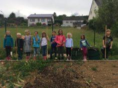 """Die Projektgruppe """"Bienen"""" der Grundschule Aach-Newel"""