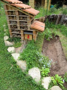 Der Sumpfgraben ist fertig ausgehoben und schon teilweise bepflanzt.