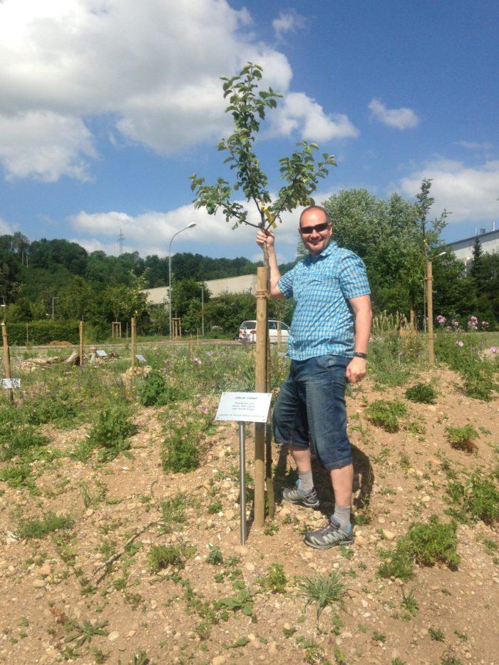 UNSER SPENDER-BAUM – angegangen und selbst gepflanzt!