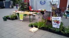 Unser Infostand zur Pflanzaktion in der Baumschulenstraße