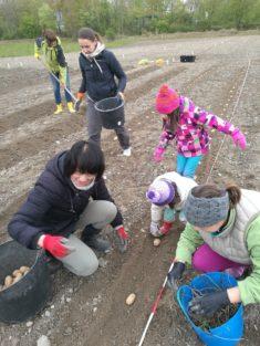 Kinderarbeit ausdrücklich erlaubt!