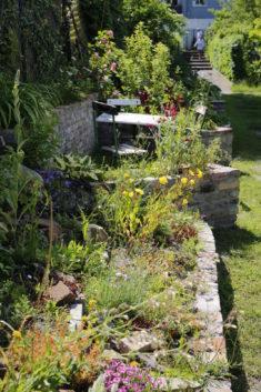 Ein bunt gedeckter Tisch…zumindest für die Wildbienen