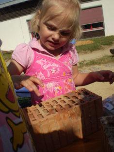 Für unser Insektenhotel, werden Steine von einer Seite mit Ton oder Pappmache (hier) befüllt, um ...