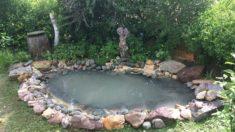 Teich frisch angelegt im Mai jetziges Foto folgt