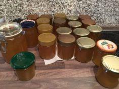 Ein teil des ersten Honigs