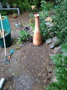 Vorher: Ansaat-Experiment Berg-Sandglöckchen im Garten