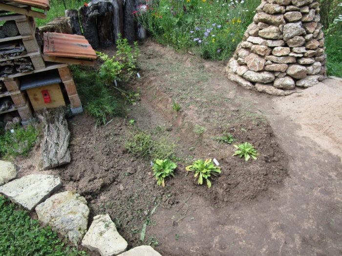 Die Grasnabe ist weg, der Sumpfgraben wird noch verbessert.