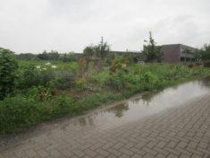 Nach dem Starkregen