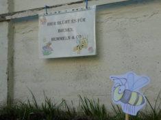 """Biene Glubsch: """"Oh Biene Maja ist ja auch hier"""""""