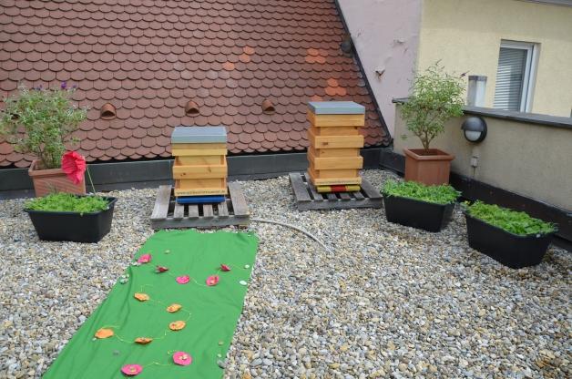 Für unsere Bienen rollen wir den grünen Teppich aus