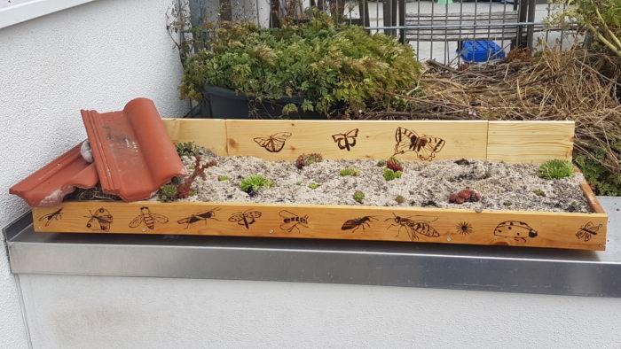 Pflanzkasten bestückt