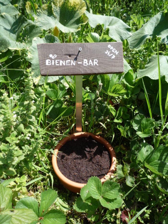 Bienen-Bar