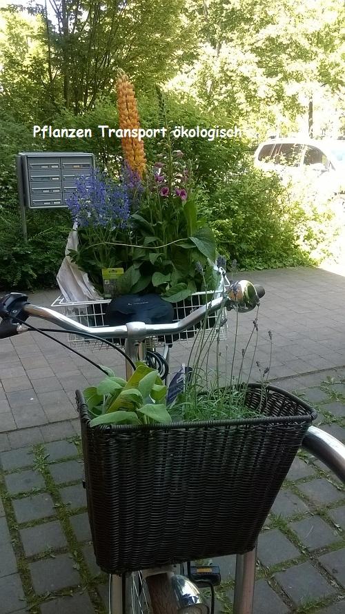 Ökologischer Pflanzentransport