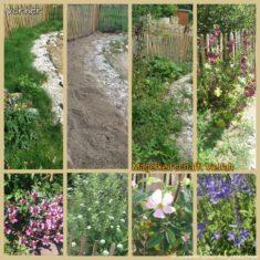 Magerkeit schafft Vielfalt – Vielfalt im Blumen Beet