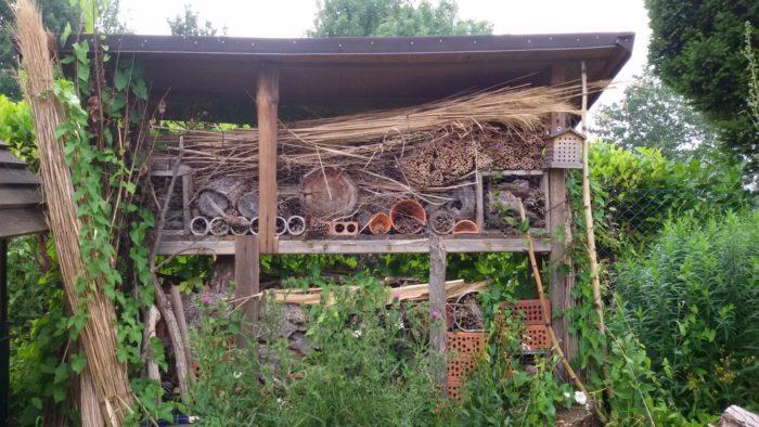 Unser Insektenhotel wird von vielen Gästen besucht!