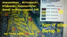 Alles Biotop Mietergärten der GBW inclusive