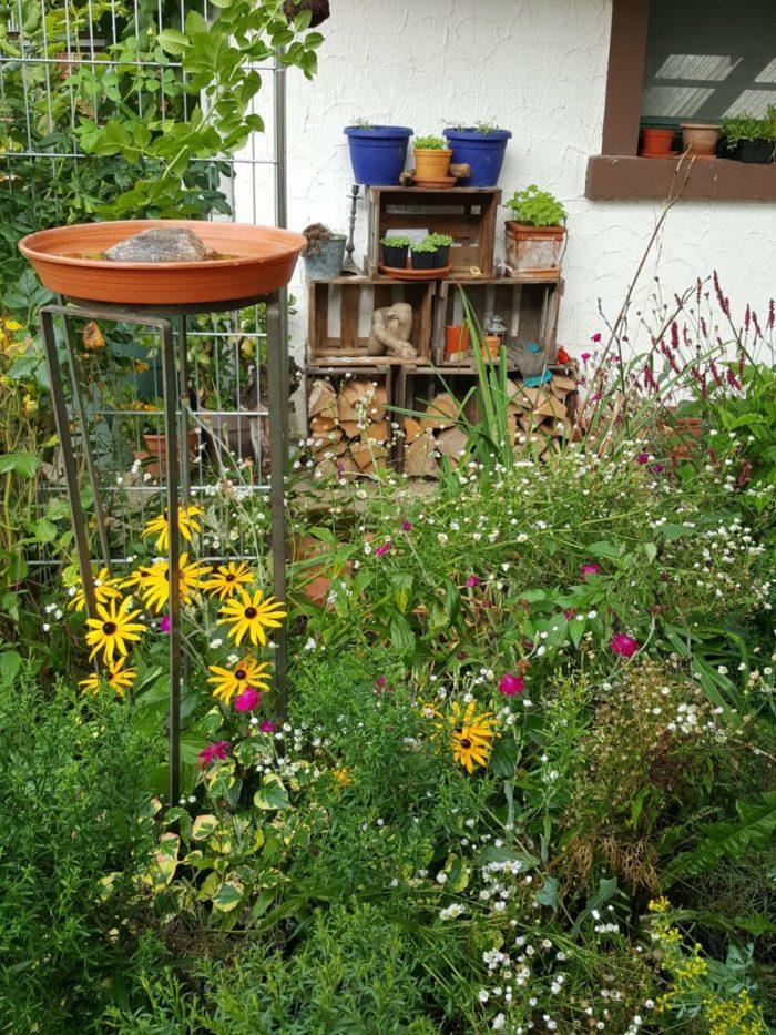 Buntes Bauernblumenbeet