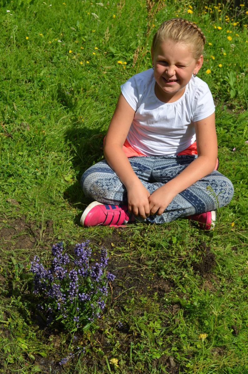 10. schöne Blumen für uns und die Bienen
